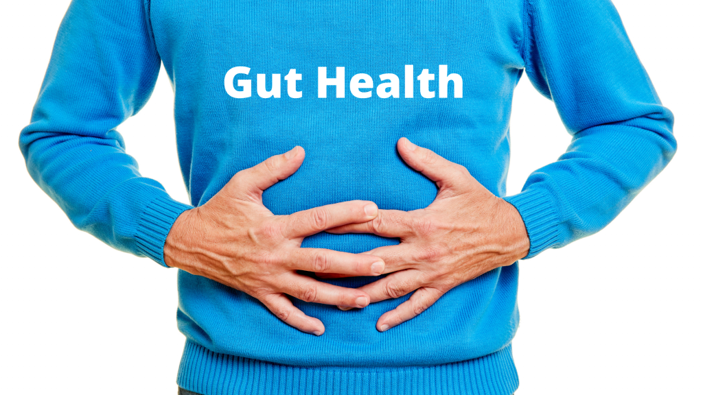Gut Health Blog Banner